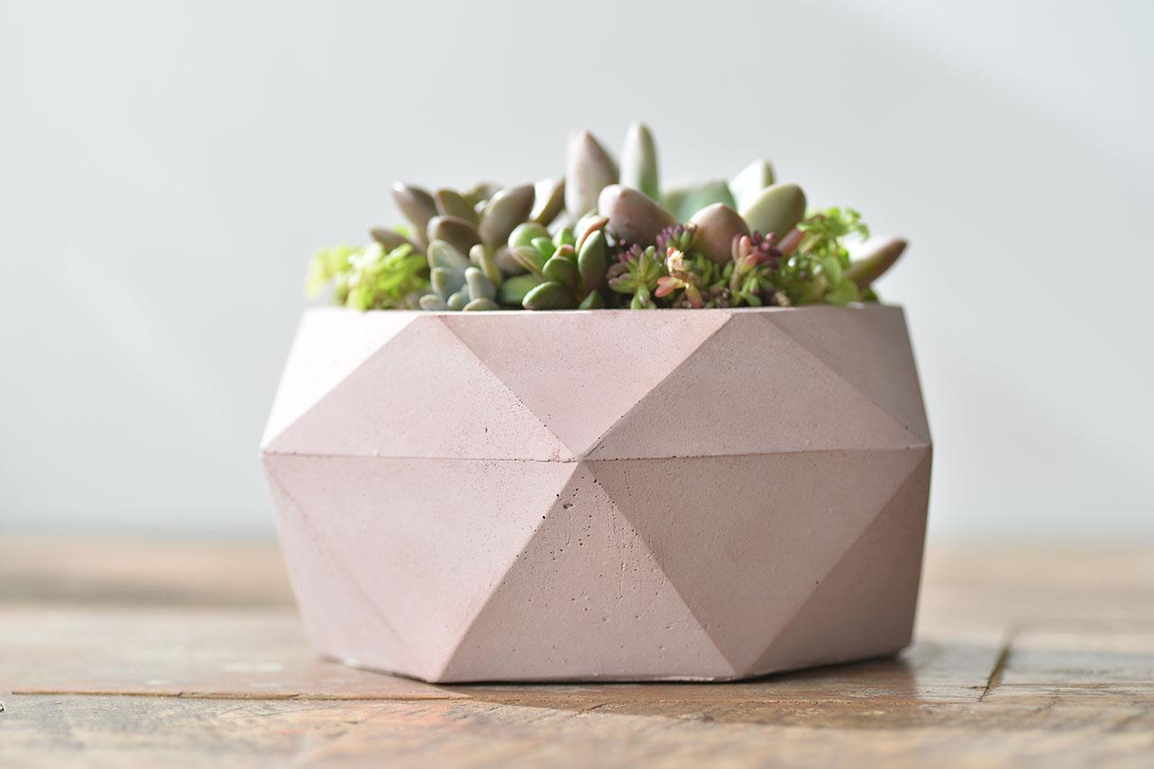粉色鑽石盆