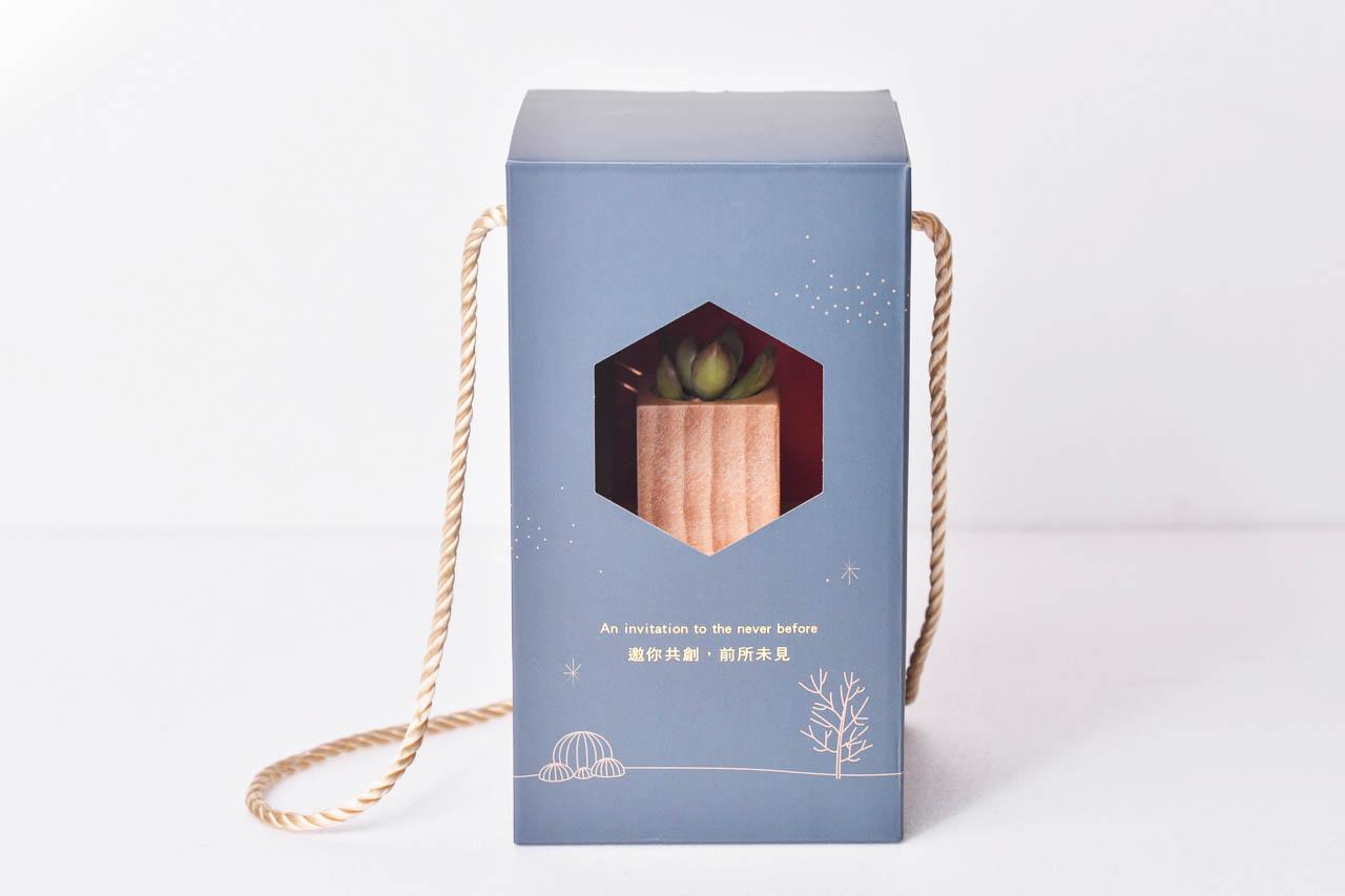 客製化多肉盆栽禮贈品 - 原木盆案例 2020 電通集團禮贈品 21