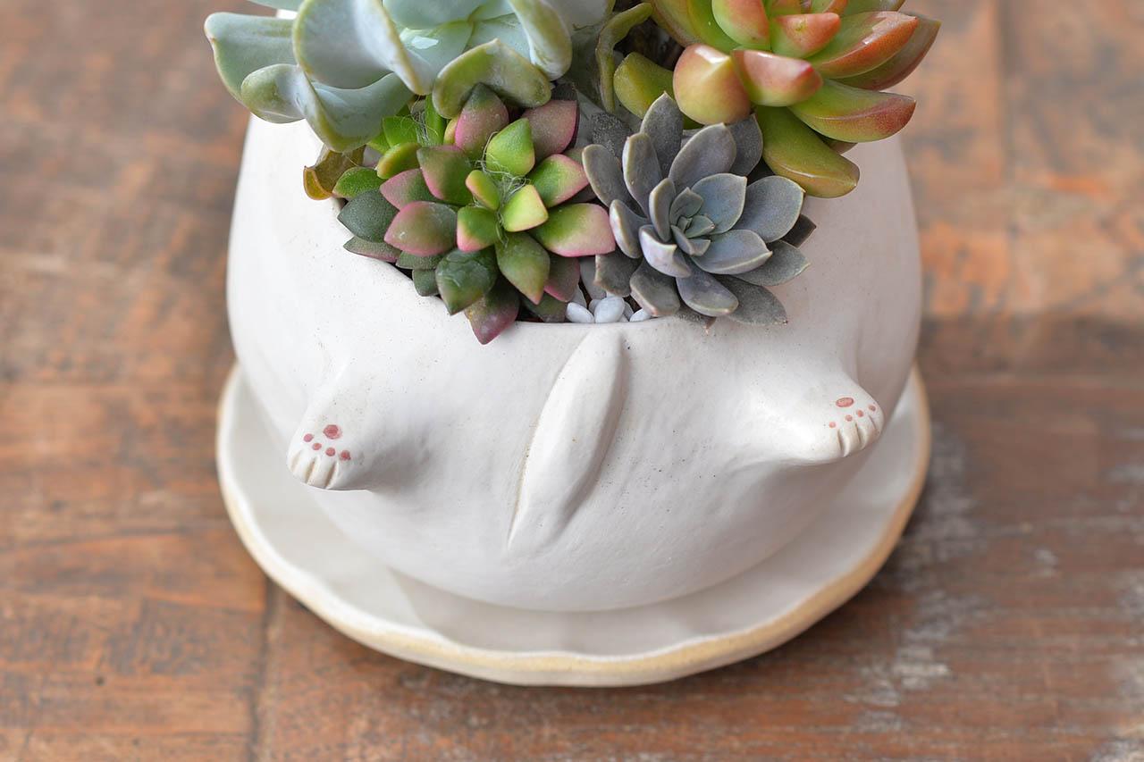 躺著賺招財貓 - 經典白貓+ 白貓3