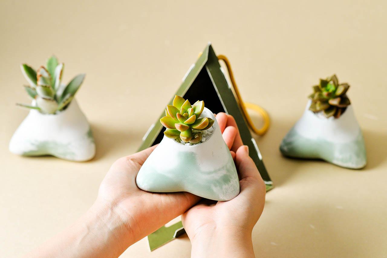 2021 端午禮盒 - 多肉粽盆 2021 有肉的端午節植物係禮盒_台灣設計製造13