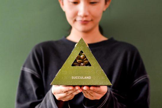 古代防疫妙方-端午節香包由來、習俗與禮品推薦 2021 有肉的端午節植物係禮盒_台灣設計製造16