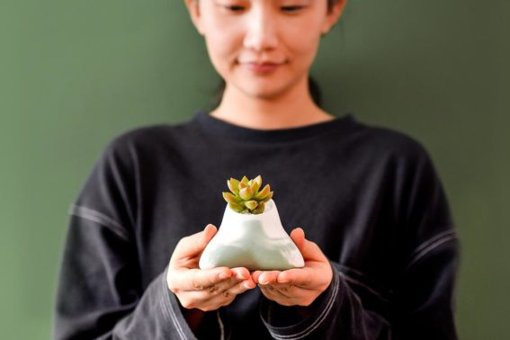 2021 有肉的端午節植物係禮盒_台灣設計製造17