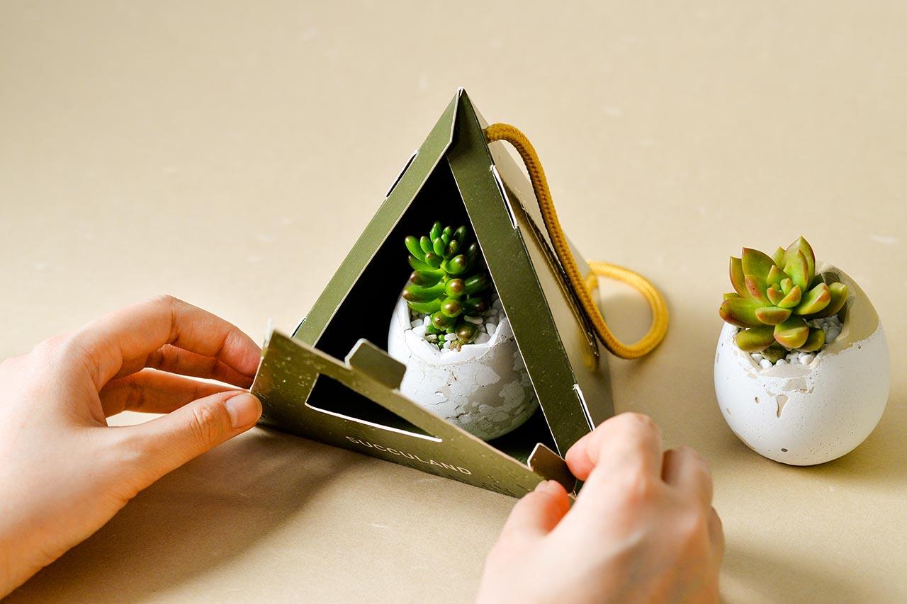 2021 端午禮盒 - 好運立蛋盆 2021 有肉的端午節植物係禮盒_台灣設計製造7