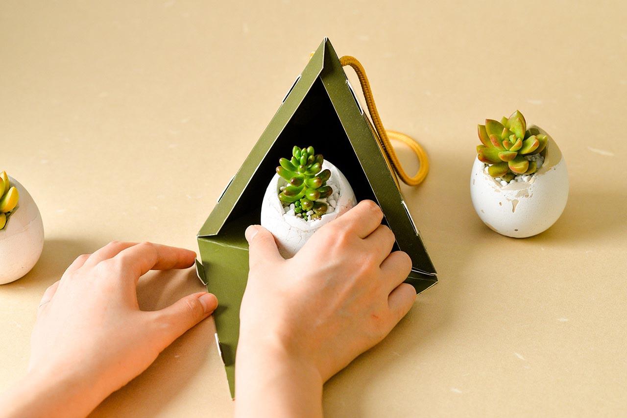 2021 端午禮盒 - 好運立蛋盆 2021 有肉的端午節植物係禮盒_台灣設計製造8