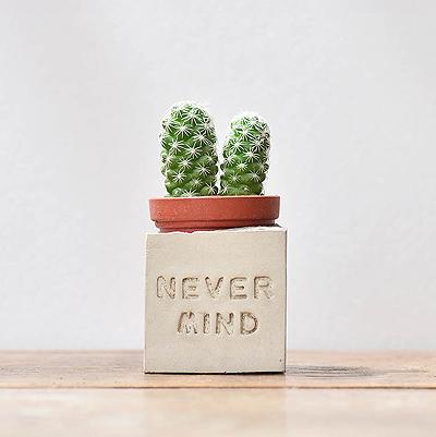 nevermind多肉磁鐵-正能量組1