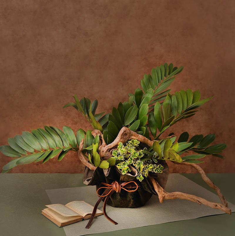 有肉 Succulent & Gift - 官方網站 0324大氣送禮盆栽173 800