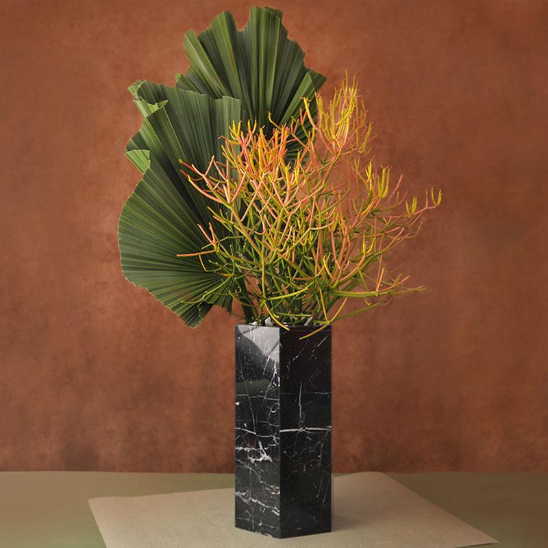 有肉 Succulent & Gift - 官方網站 0324大氣送禮盆栽204 800