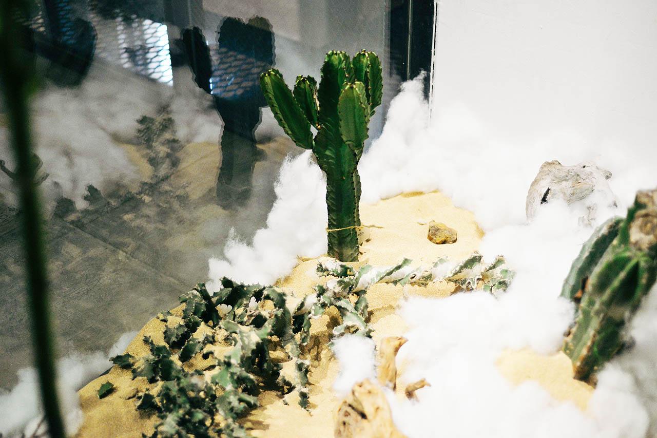 空間造景 0409 華山好樣思維特展室內植物佈置00134
