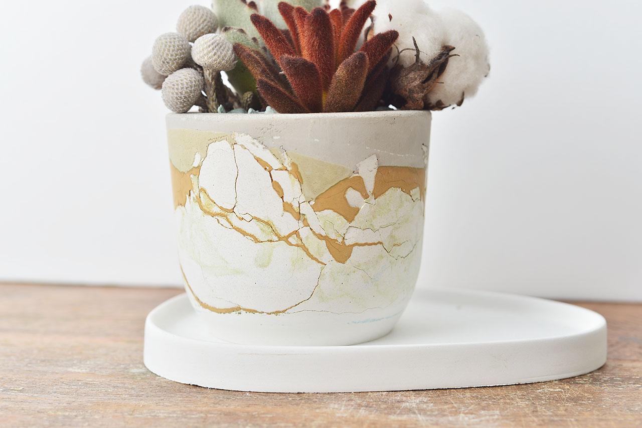 盆栽組含接水盤