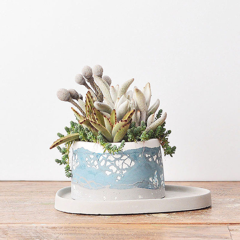 有肉 Succulent & Gift - 官方網站 800