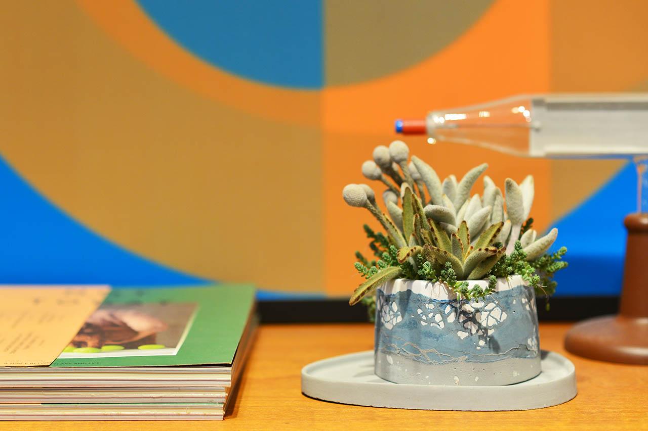 桌上盆栽擺飾