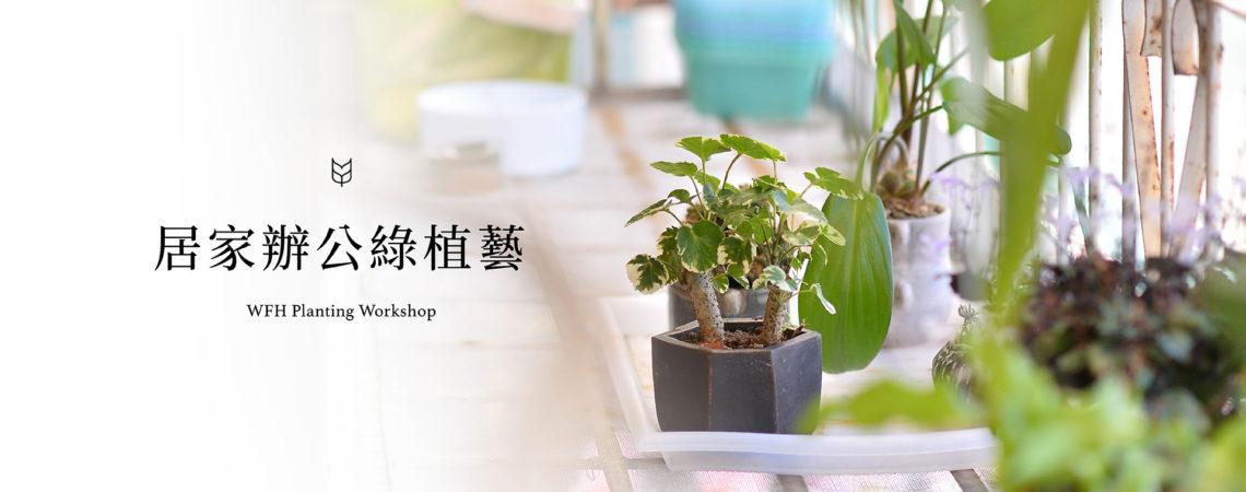 [ 多肉植栽 ] 居家辦公綠植藝 官網
