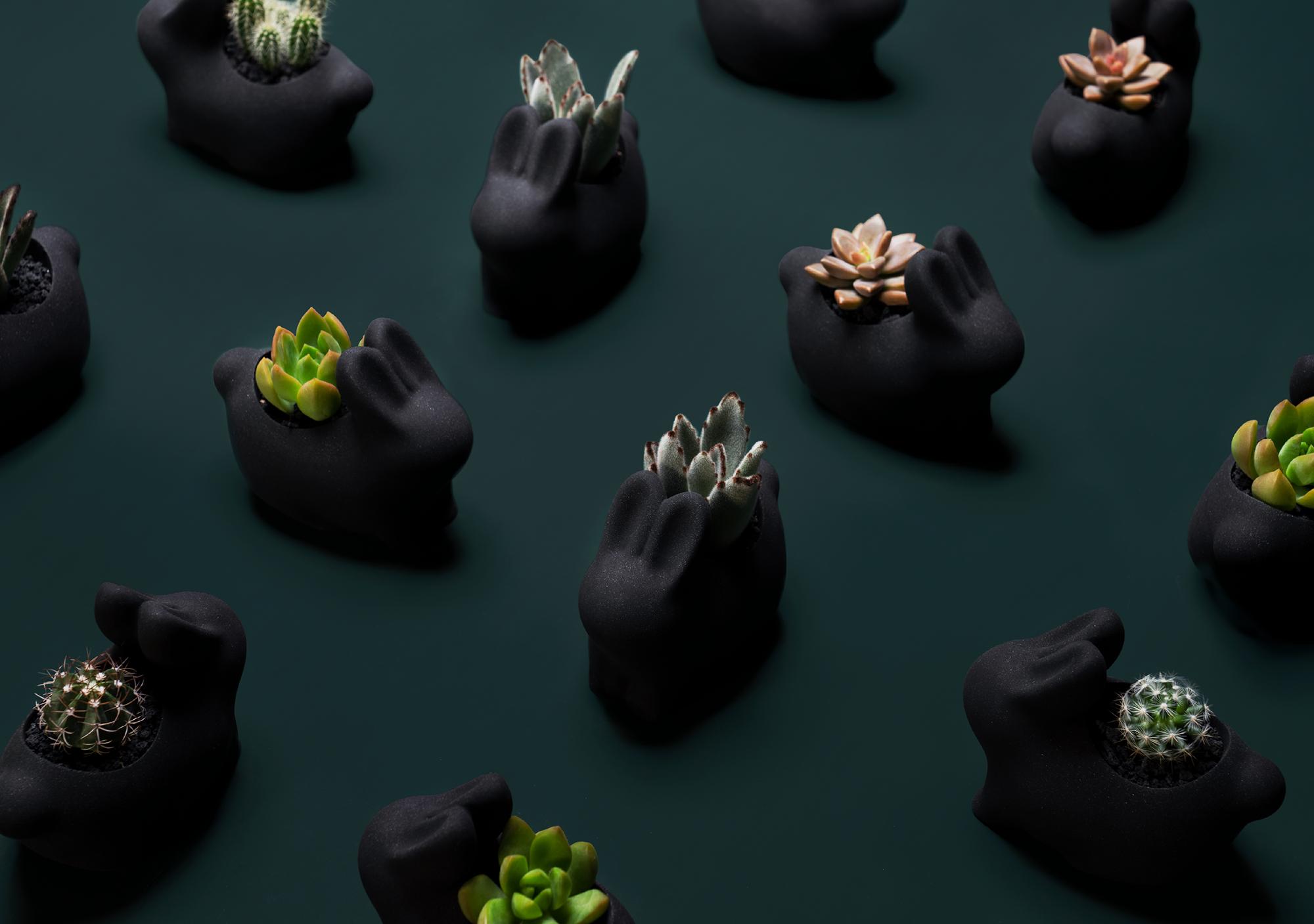 2021 年中秋植物禮盒(舊版 墨麗兔 08
