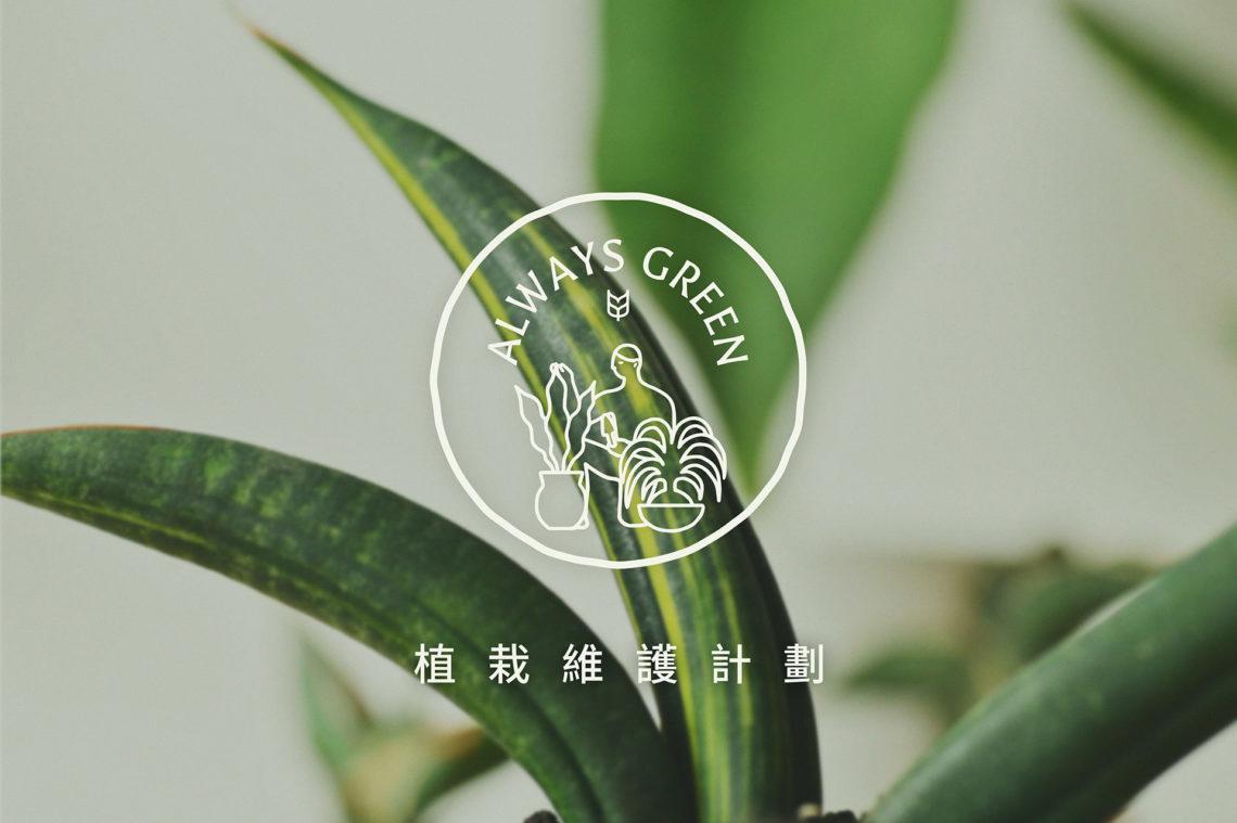 植栽維護計劃 Always Green 首圖