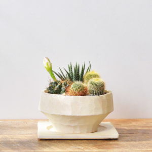 白色梯形陶盆+接水盤2