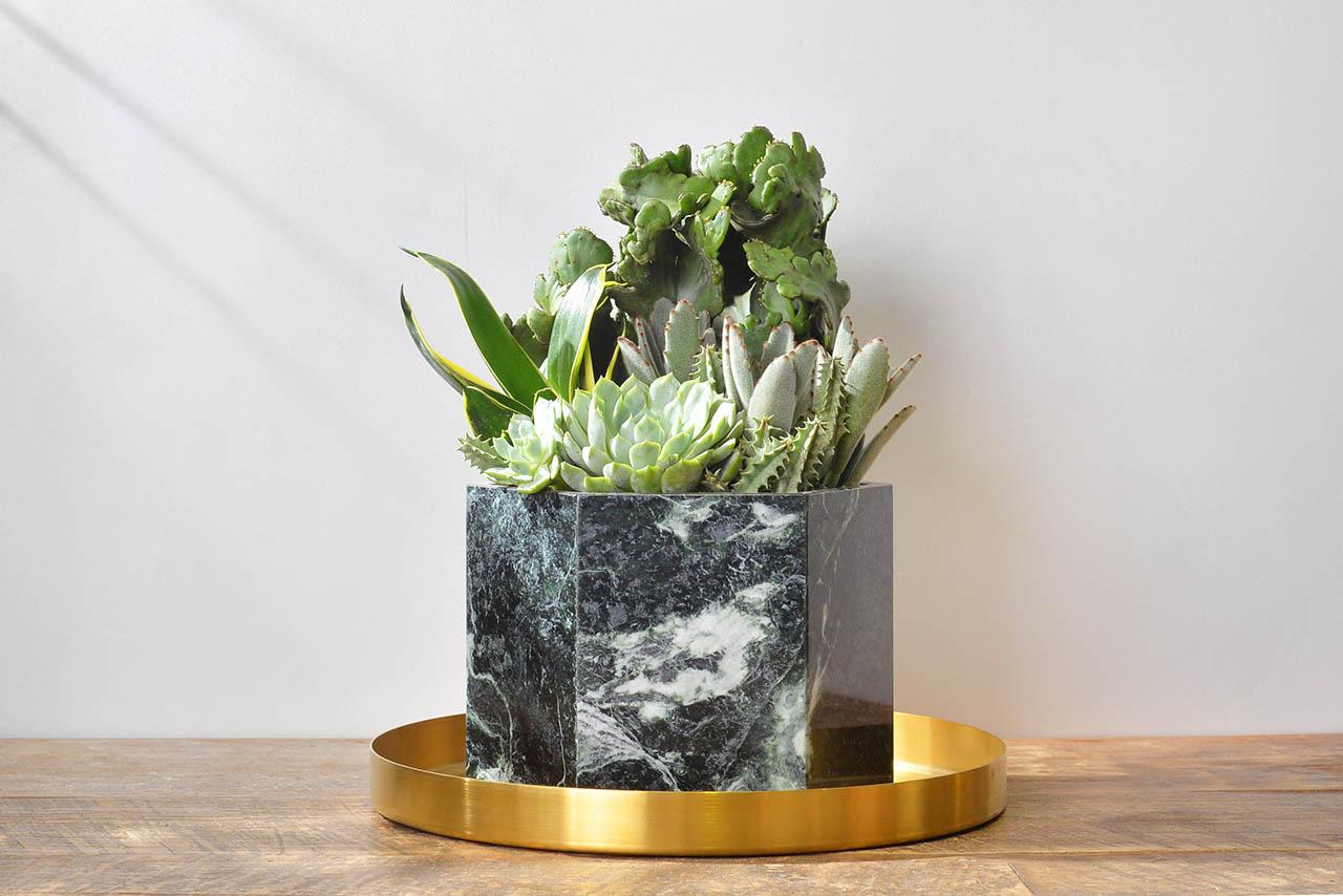 深綠色盆栽設計