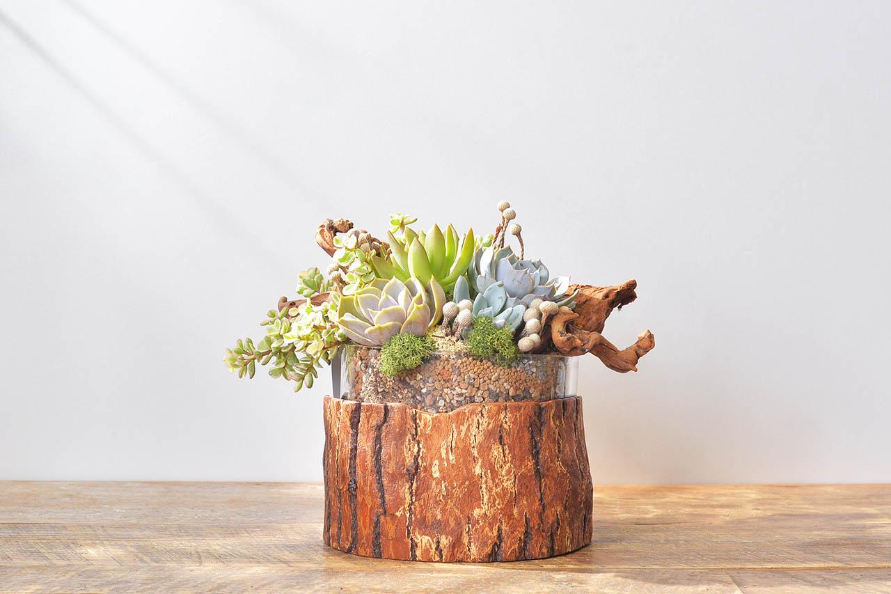 木頭盆器送禮