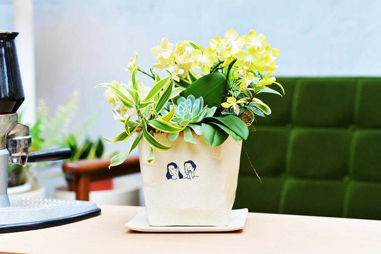 餐廳桌上盆栽