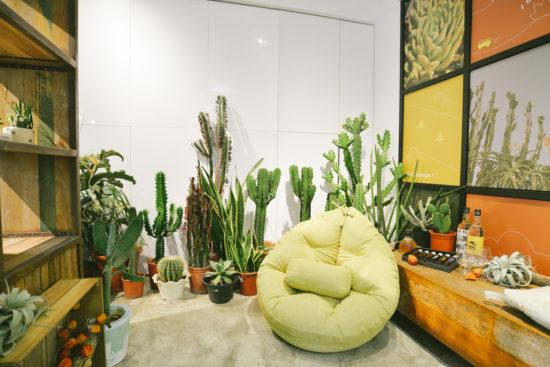 蒐集 11 種室內植栽設計裡的綠意光景 造景佈置 植物陳列 都市叢林 綠色城市6