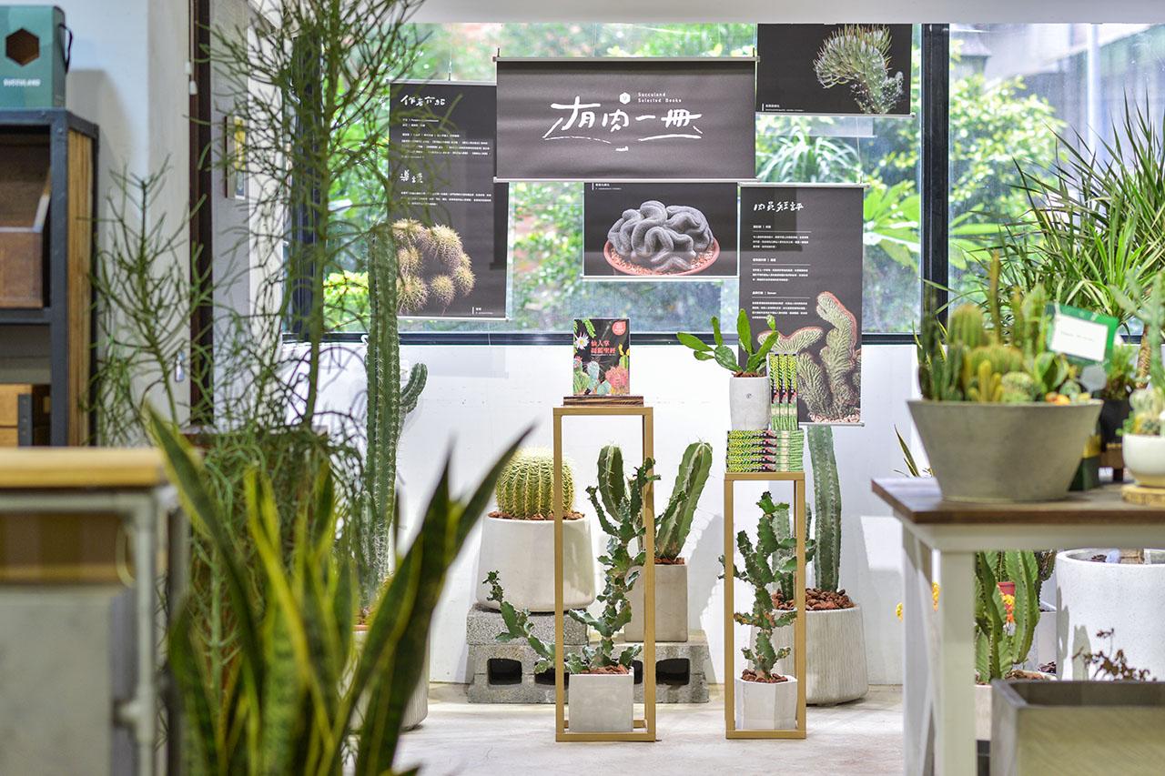 商業禮品選擇多!綠意、創意禮推薦 造景佈置 植物陳列 都市叢林 綠色城市8