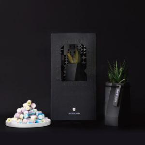 【有肉小食組】曜晶盆 - 深灰&手工糖